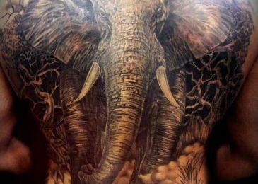 Xăm hình voi toàn bộ lưng